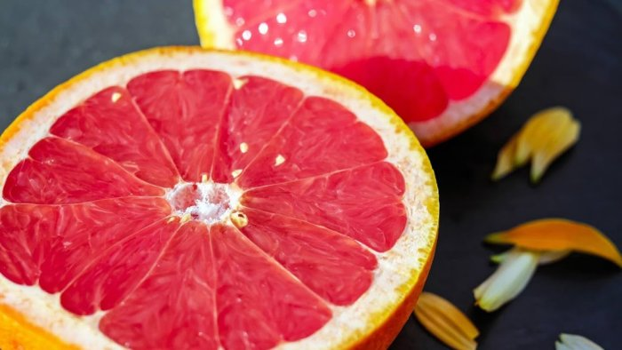 grapefruit for fatloss