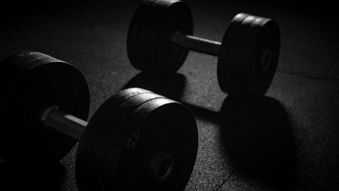 Dumbbell for body weight training