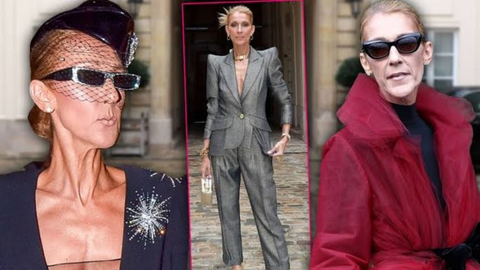 Celine Dion hitting back at body shamers